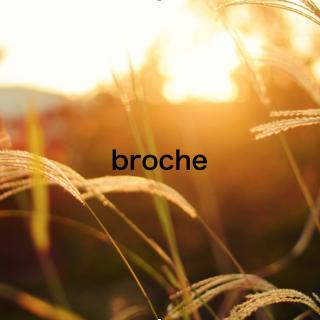 brocheフェスタ開催のお知らせです